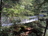 The Cable Bridge over Haslam Creek.JPG